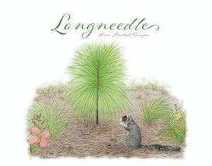 Longneedle