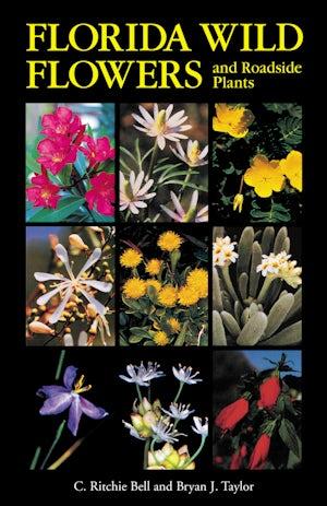 Florida Wild Flowers and Roadside Plants