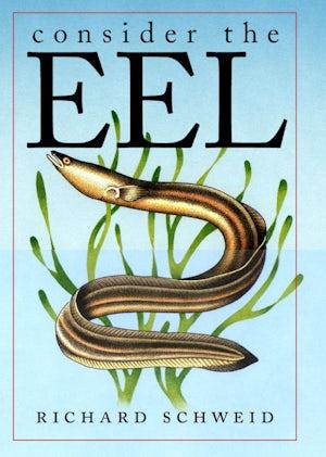 Consider the Eel