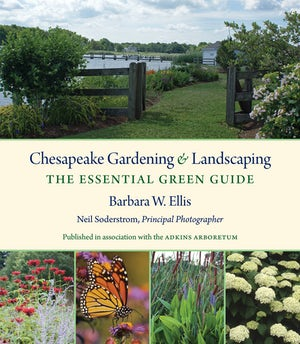 Chesapeake Gardening and Landscaping