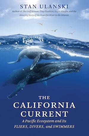 The California Current