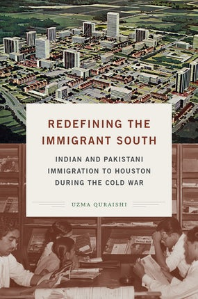 Redefining the Immigrant South