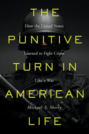 The Punitive Turn in American Life